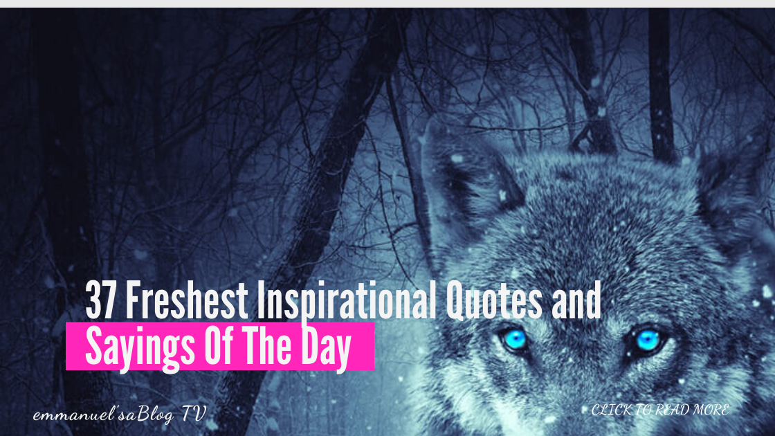 37 Motivational Quotes of All-Time Best 2020