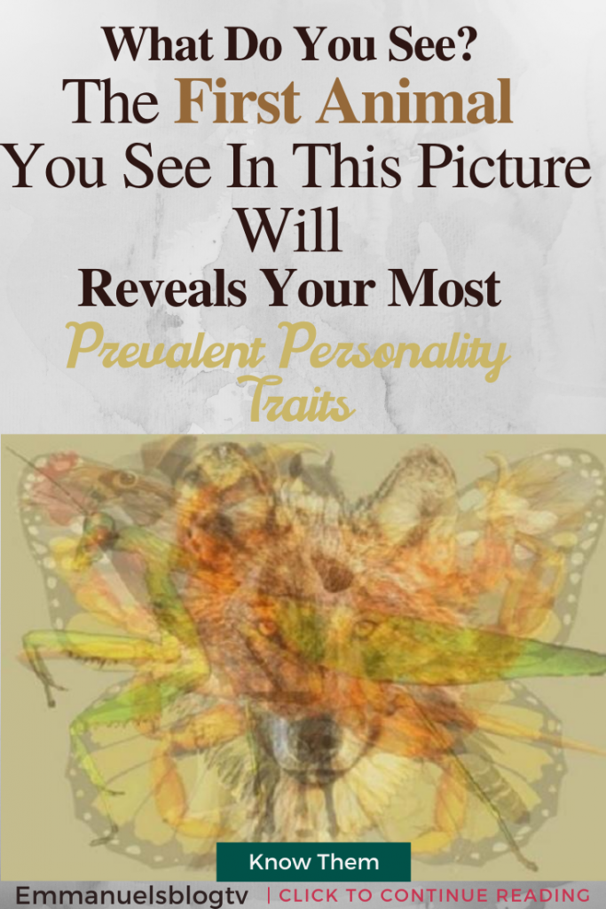 The First Animal You See In This Picture Will Reveals Your Most Prevalent Personality Traits - What Do You See?